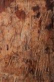 Acción de madera única y texturizada pH del fondo del viejo grunge de madera Fotografía de archivo