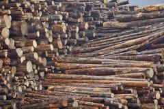 Acción de madera Fotos de archivo libres de regalías