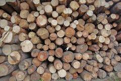 Acción de madera Imagenes de archivo