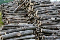 Acción de madera en tienda del aire abierto Fotos de archivo