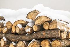 Acción de madera tajada debajo de la nieve Fotografía de archivo