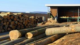 Acción de registros y de la madera Fotografía de archivo libre de regalías