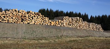 Acción de registros y de la madera Foto de archivo