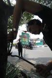 Acción del árbol Fotografía de archivo