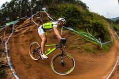 Acción del ciclista de la muchacha de MTB Fotografía de archivo