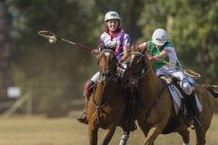 Acción del Equestrian del mundial de PoloCrosse Fotografía de archivo libre de regalías