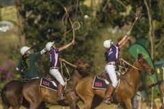 Acción del Equestrian del mundial de PoloCrosse Imagen de archivo