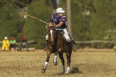 Acción del Equestrian del mundial de PoloCrosse Fotografía de archivo
