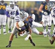 2014 acción del fútbol del NCAA - estado de WVU-Kansas Fotografía de archivo libre de regalías