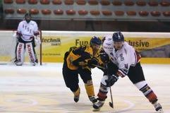 Acción del juego de hockey Foto de archivo