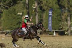 Acción del jugador del caballo de la Polo-cruz Imagen de archivo