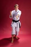 Acción del karate Imágenes de archivo libres de regalías
