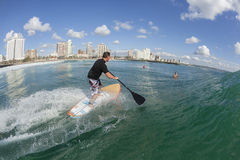 Acción del SORBO de la persona que practica surf que practica surf Foto de archivo