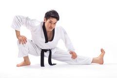 Acción del Taekwondo Foto de archivo libre de regalías
