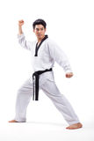 Acción del Taekwondo Foto de archivo