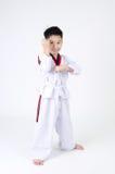 Acción del Taekwondo de un muchacho lindo asiático Imagenes de archivo