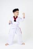Acción del Taekwondo de un muchacho lindo asiático Fotos de archivo
