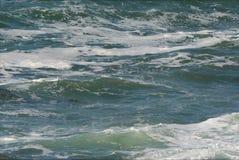 Acción pacífica de la onda - costa de Oregon Fotos de archivo