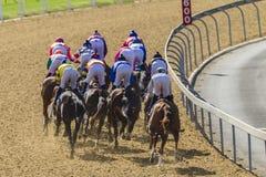 Acción posterior de la carrera de caballos Imagenes de archivo