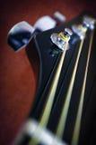 Acción principal de la guitarra Foto de archivo