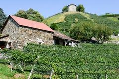 Acción tradicional vieja del silo del cereal del trigo en Bellinzona Imagen de archivo libre de regalías