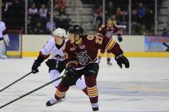 Acción viva del hockey sobre hielo Foto de archivo libre de regalías