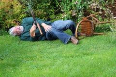 Accident, garden fallen over. Danger. Royalty Free Stock Images