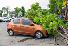 Accidents caused by storms and rain. Stock Images