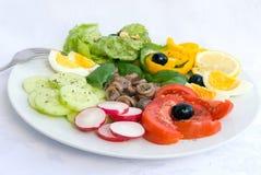 acciuga delle specialità gastronomiche mista - Fotografia Stock Libera da Diritti