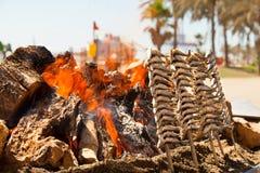 Acciughe arrostite in un modo spagnolo, cucinato alla riva di mare Fotografie Stock Libere da Diritti