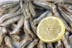 Acciughe fritte Fotografia Stock