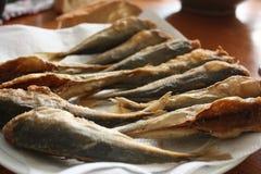 Acciughe fritte nel grasso bollente Fotografia Stock