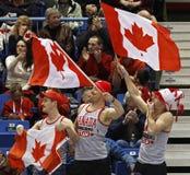 Acclamazione d'ondeggiamento d'arricciatura della bandiera di fan del Canada Fotografia Stock