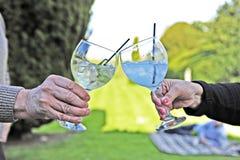 Acclamazioni - gin bevente con i vetri del pallone fotografia stock