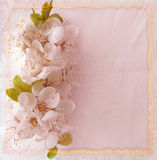 Accogliere carta floreale con i fiori della ciliegia Fotografia Stock