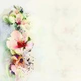 Accogliere carta floreale con i fiori luminosi della molla Immagine Stock