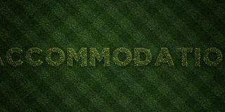 ACCOMMODATION - fresh Grass letters with flowers and dandelions - 3D rendered royalty free stock image Stock Photos