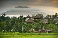 Accompagnateurs, lever de soleil de Bali. photographie stock libre de droits
