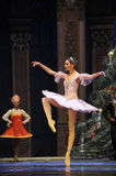 Accompanied by the rhythm of the music-The Ballet  Nutcracker Stock Images