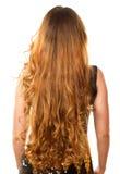 Acconciatura da capelli ricci lunghi dalla parte posteriore Fotografie Stock Libere da Diritti