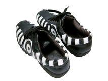 Accoppiamenti dei pattini della zebra Fotografia Stock Libera da Diritti