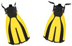 Accoppiamenti delle alette gialle isolate sul BAC puro di bianco Fotografia Stock Libera da Diritti