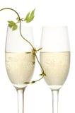 Accoppiamenti delle scanalature di champagne immagine stock libera da diritti
