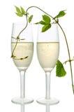 Accoppiamenti delle scanalature di champagne fotografie stock libere da diritti