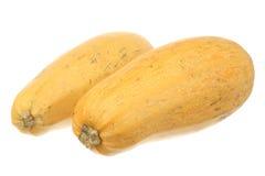 Accoppiamenti di zucchino Immagine Stock