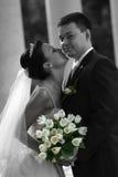 accoppiamenti Nuovo-sposati Fotografie Stock Libere da Diritti