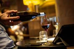 Accoppiamento del vino Fotografie Stock Libere da Diritti