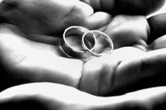 Accoppiato: Bande di nozze di B&W Fotografia Stock Libera da Diritti
