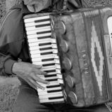 Accordeonist die de harmonika spelen royalty-vrije stock foto
