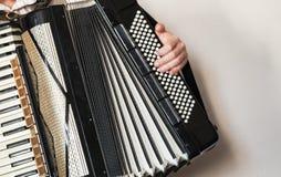 Accordeonist met uitstekende harmonika stock fotografie